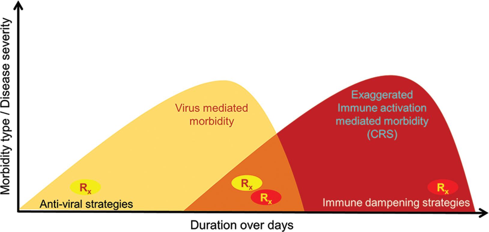 図1:COVID-19患者の根本的なメカニズムに基づく罹患率のタイプ。 スキーマは、初期のウイルス応答フェーズとそれに続く誇張された宿主免疫応答フェーズの連続体を表し、各フェーズはその管理のための個別の治療アプローチから利益を得ます